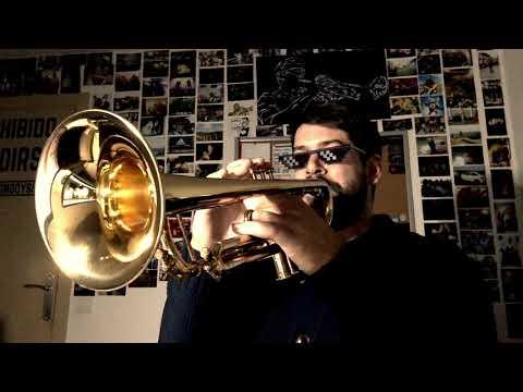 Havana Trumpet Solo Josué García