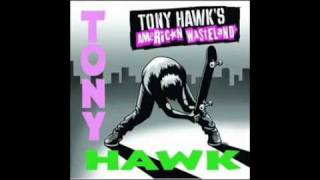 suicidal tendencies institutionalized soundtrack tony hawk s american wasteland