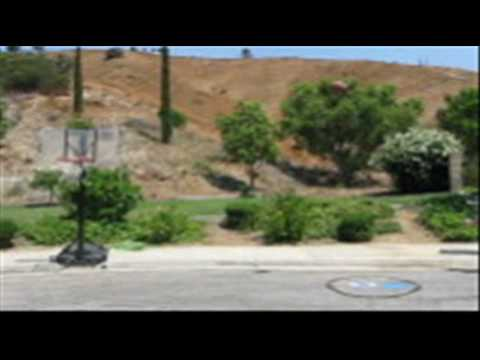Orange County/CA BasketBall dunks