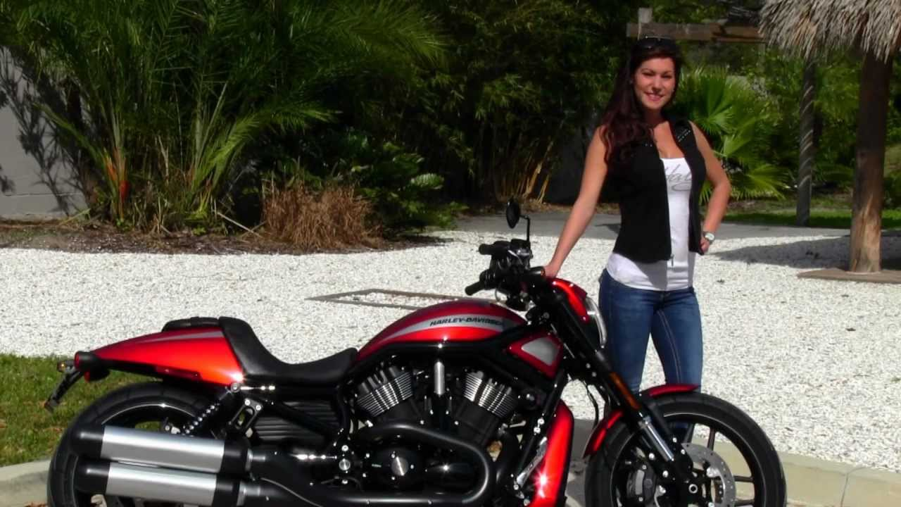 2012 Harley Davidson Vrscdx Night Rod Special For Sale On: New 2013 Harley-Davidson VRSCDX Night Rod Special For Sale