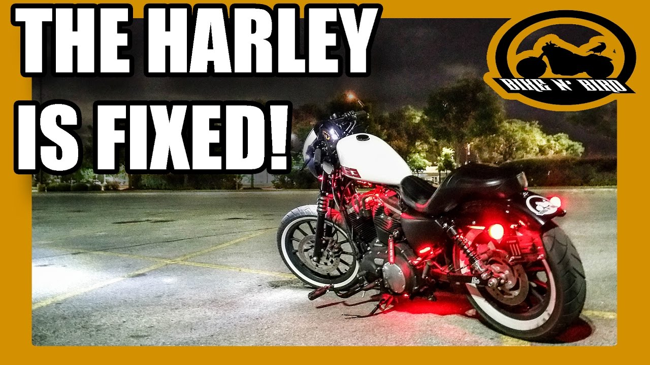 the mechanics were wrong harley sportster 883 iron