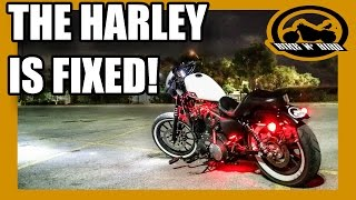 THE MECHANICS WERE WRONG! - Harley Sportster 883 Iron