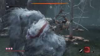《隻狼:暗影雙死》挑戰獅猿!~(菩薩谷)