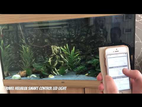 Juwel HeliaLux Aquarium Smart Control Light!! Stunning!!