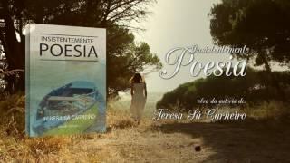 capa de Insistentemente Poesia de Teresa Sá Carneiro