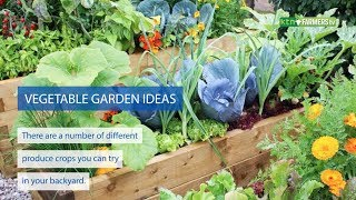 5 Vegetables to grow in your garden