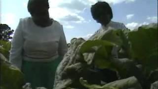 Algia Mae Hinton & sister: Jesus Lifted Me (1983)