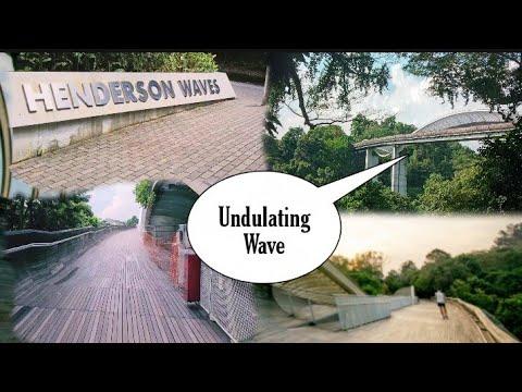 THE HIGHEST PEDESTRIAN BRIDGE IN SINGAPORE | HENDERSON WAVES BRIDGE
