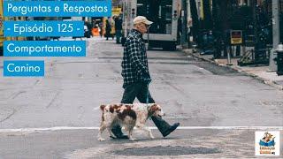 Perguntas e Respostas - Episódio 125 - Comportamento Canino