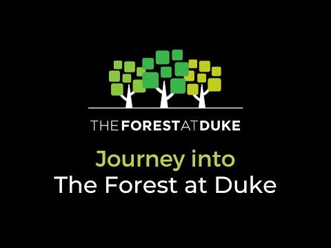 Continuing Care Retirement Community - Durham, NC - The Forest at Duke