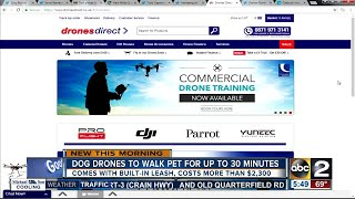 Want a drone that can walk your dog?