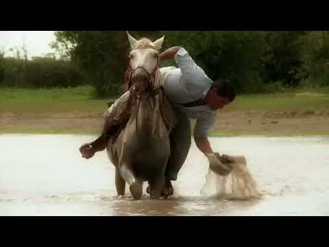 Mi Caballo y yo - Cholo Valderrama