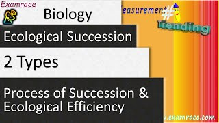 2 Types of Ecological Succession, Process of Succession & Ecological Efficiency thumbnail
