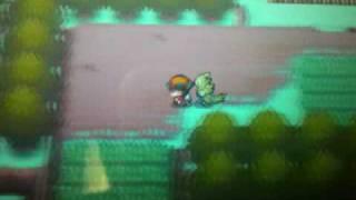 Pokemon Heart Gold/Soul Silver Catching Larvitar HD