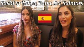 【三浦三崎港】スペイン人女子!回転寿司で新鮮マグロを大絶賛!Conveyor-belt Sushi in Tokyo! thumbnail