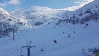 שיא החורף: שלג ירד בחרמון ובגולן, עצים קרסו בדרום ובמרכז