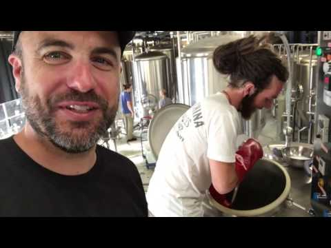 Brew Day - Behind The Scenes At Batch Brewing Company