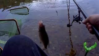 рыба клюет   рыбалка на поплавок в августе