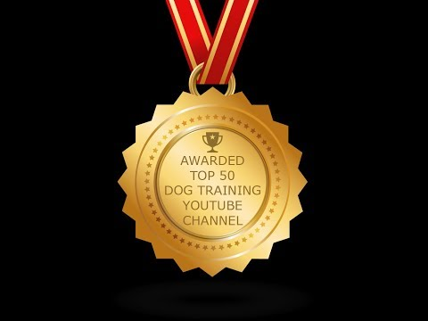 Top 50 Dog Trainers on YouTube, I'm #4
