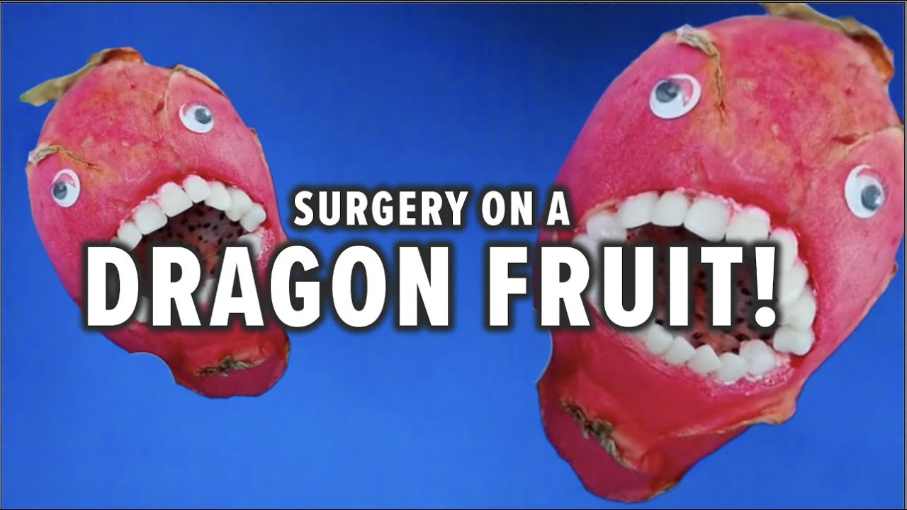 Fruit Surgery! Dragonfruit Has Brain Surgery! Discount Dentist Ep 54 #Shorts