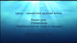 цигун гимнастика видео