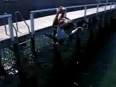 blackout of pier ladder