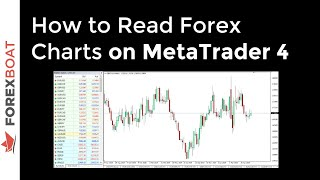How To Read Forex Charts On MetaTrader 4