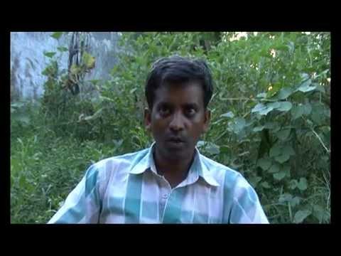 Nepal Today Episode 138 : Story of Milijuli Fresh Vegetable, Lamjung & Gotihawa Bangur, Kapilbastu