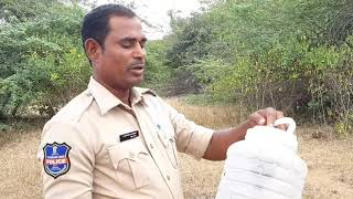 18/11/2018 today I am released. 9 snakes at budharam forest .Sagar snake society 99855 455 26