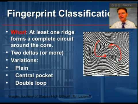the development and study of fingerprints Here, we present a study comparing the development and visualization of nonvisible fingerprints on stainless steel substrates using this electrochromic enhancement approach with three classical.