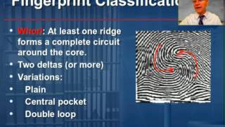 Fingerprints, Part 2: Classification and Individualization