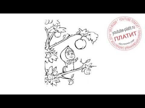Маша и медведь нарисованные картинки  Нарисовать рисунок маша и медведь карандашом