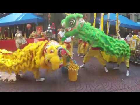 Chinese New Year Lion Dance (Part 2)
