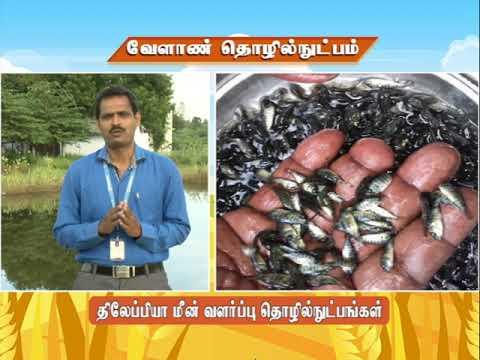 Download Pon Vilaiyum Bhoom (17.11.2020) Agricultural Technology: