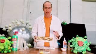 Wie wirkt Desinfektionsmittel gegen Viren?