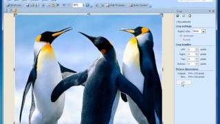 Basic Photo Editing, Microsoft Office 2010, Microsoft Office Picture Manager