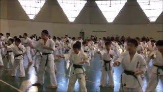 国際空手道連盟極真会館 東京城北支部 少年部審査会です。
