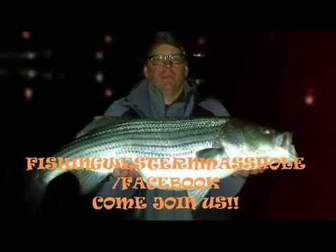 30 Pound Stripers In Western Mass!?