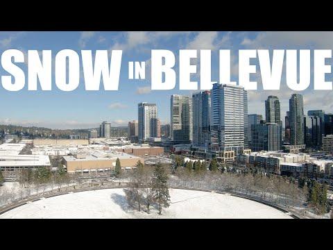 Bellevue Park Winter Snow Aerials