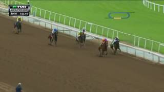 RACE REPLAY: 2016 Adoration Stakes Featuring Beholder