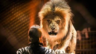 Attack of animals in Circuses || The greatest show in the world