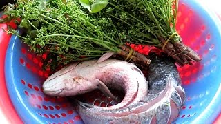 Amazing Khmer Food - How to cook fish In Cambodia - Easy home food recipes healthy