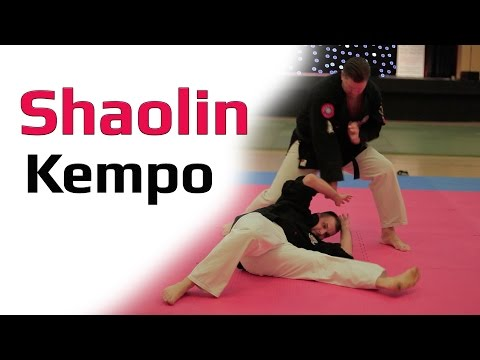 Awesome Shaolin Kempo Master Toni Finken Schaffrath