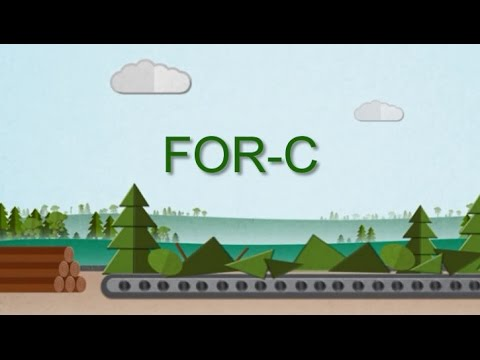 Advancing collaboration between forest and oil and gas sectors