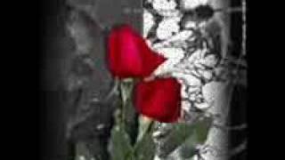 Dj Muggs - Dead Flowers