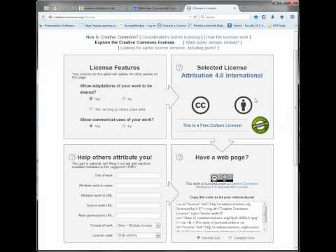 Choose a license using Creative Commons license generator.