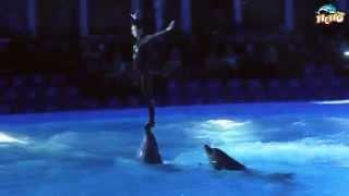 Романтическое Ночное шоу Минского дельфинария