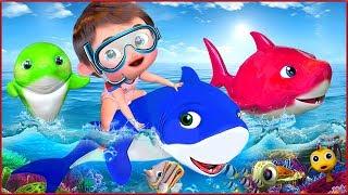 🔴 Baby Shark , Yes Yes Good Habits , Wheels on the Bus , Happy Birthday Song - Banana Cartoon [HD]