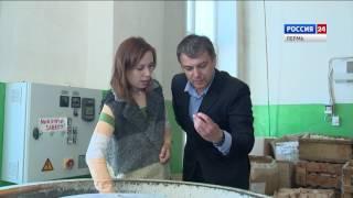 Сделано в Перми: Краснокамская игрушка