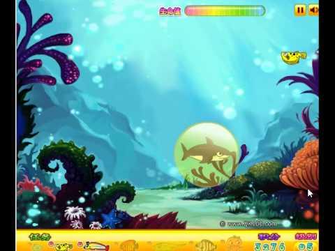 เกมส์ เกมส์ปลาฉลามกินปลาเล็ก